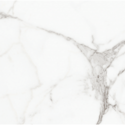 Carrara Digital Marble White Matt Rect Large 80x80 Wall and Floor