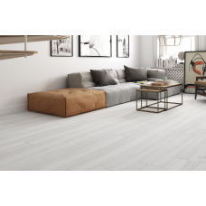 Henz Blanco Rectified Glazed Porcelain Glossy Wood Effect Tile 22,5CMx119,5CM