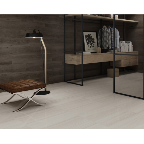 Keral Light Grey Gloss Wall And Floor Porcelain 30x60